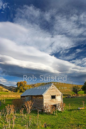 Old farm hut, shed or house building on Central Otago farmland with heavy stormy sky above, in beautiful afternoon light, Bendigo, Central Otago District, Otago Region, New Zealand (NZ) stock photo.