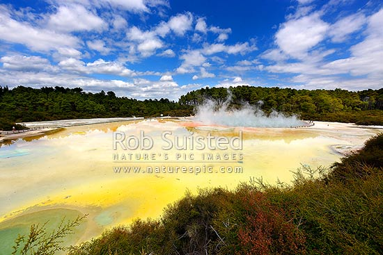 Champagne Pool (green-orange) and Artists Palette (yellow), famous coloured boiling hot spring and sintered terrace, Waiotapu Geothermal Area. Wai-o-tapu. Waiotapu Thermal Reserve, Rotorua, Rotorua District, Bay of Plenty Region, New Zealand (NZ) stock photo.
