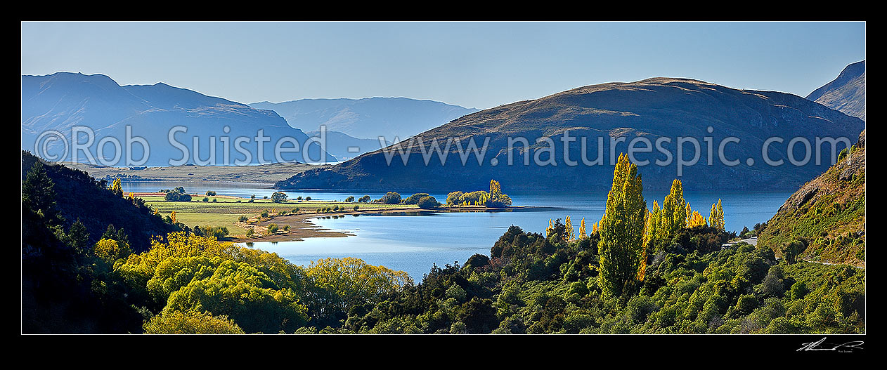 Image of Lake Wanaka autumn panorama. Glendhu and Paddock Bay beyond, Wanaka, Queenstown Lakes District, Otago Region, New Zealand (NZ) stock photo image