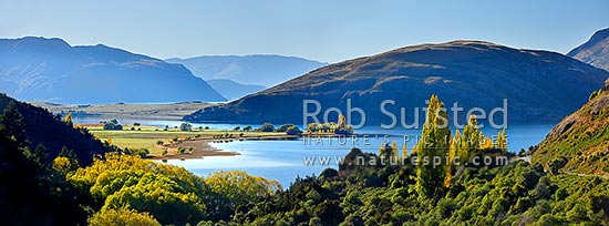 Lake Wanaka autumn panorama. Glendhu and Paddock Bay beyond, Wanaka, Queenstown Lakes District, Otago Region, New Zealand (NZ) stock photo.