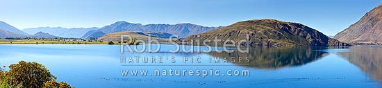 Lake Wanaka autumn panorama. Perfectly calm and still waters in Glendhu and Paddock Bays with canada geese (Branta canadensis) flock on water, Wanaka, Queenstown Lakes District, Otago Region, New Zealand (NZ) stock photo.