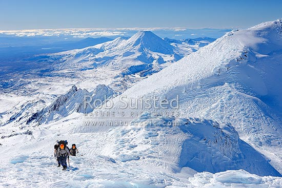 Alpine climbers climbing Mount Ruapehu on instruction training course. Pinnacle Ridge and Mt Ngauruhoe (2287m) beyond. Wind sculptured ice formations in foreground, Tongariro National Park, Ruapehu District, Manawatu-Wanganui Region, New Zealand (NZ) stock photo.