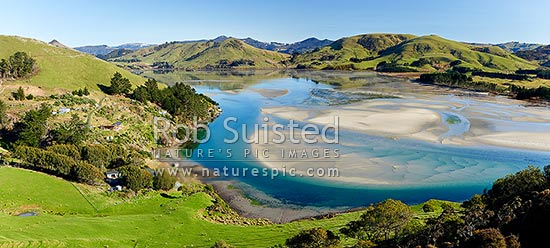 Otago Peninsula, farmland, houses and Papanui Inlet on a calm spring morning. Panorama, Otago Peninsula, Dunedin City District, Otago Region, New Zealand (NZ) stock photo.