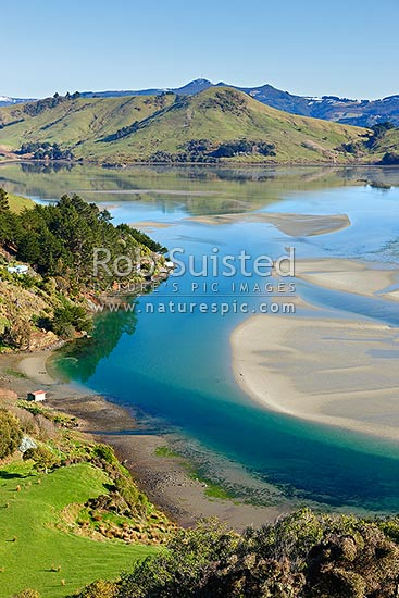 Otago Peninsula, farmland, houses and Papanui Inlet on a calm spring morning, Otago Peninsula, Dunedin City District, Otago Region, New Zealand (NZ) stock photo.