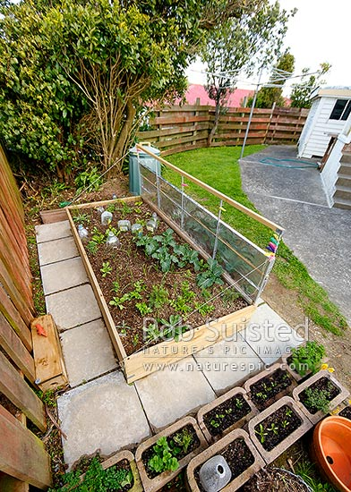 Pallet Vegetable Garden Vertical