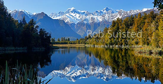 Lake Matheson. Morning calm reflections on lake with Aoraki / Mount Cook (right;3754m) and Mount Tasman (left;3498m). Panorama, Westland National Park, Westland District, West Coast Region, New Zealand (NZ) stock photo.
