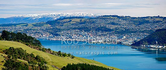 Dunedin City panorama, looking up Otago Harbour toward the City, Dunedin City, Dunedin City District, Otago Region, New Zealand (NZ) stock photo.