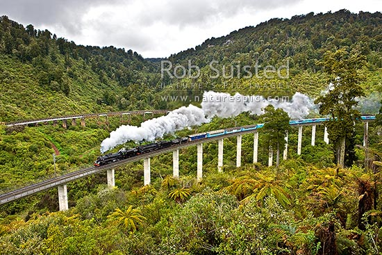 Hapuawhenua Viaducts, historic and modern, with steam locomotives and train crossing. North Island Main Trunk Railway Line Centenary celebrations. Tongariro National Park, Ohakune, Ruapehu District, Manawatu-Wanganui Region, New Zealand (NZ) stock photo.