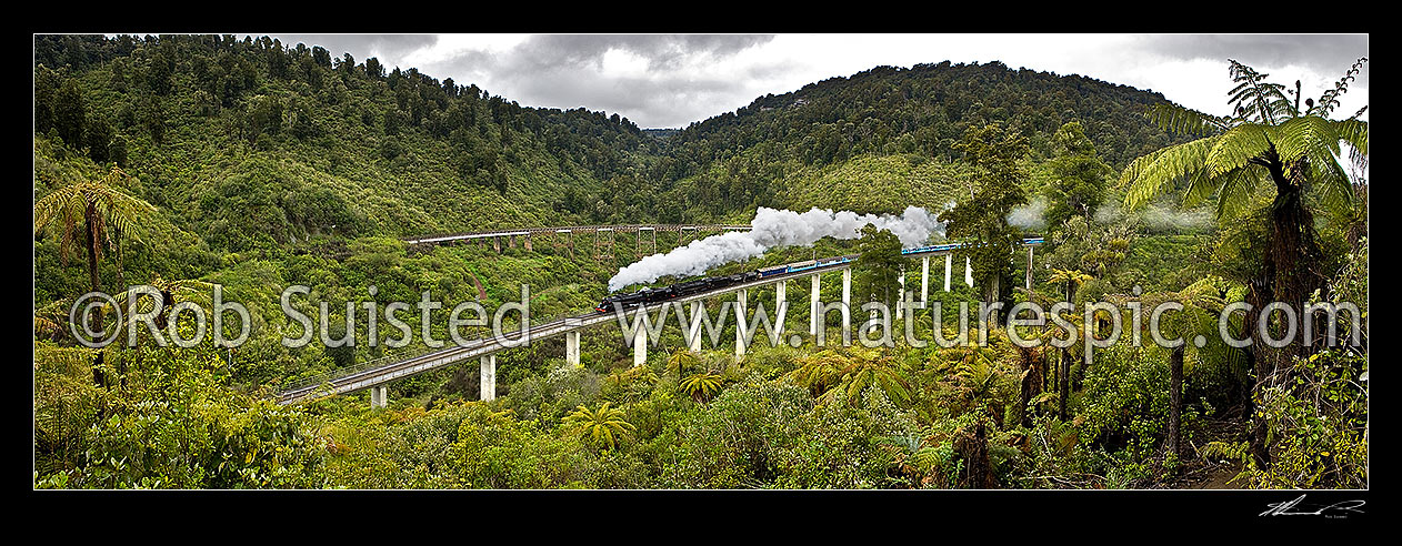 The result: Hapuawhenua Viaducts old and new, with centennary steam train