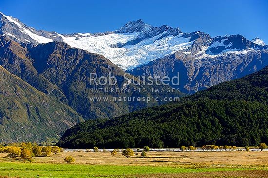 Mt Avalanche (2606m), and Cameron Flat, with autumn coloured trees. Matukituki River valley, Mount Aspiring National Park, Queenstown Lakes District, Otago Region, New Zealand (NZ) stock photo.