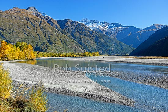 Matukituki River flowing under Mt Avalanche (2606m), and past Cameron Flat, with autumn coloured trees, Mount Aspiring National Park, Queenstown Lakes District, Otago Region, New Zealand (NZ) stock photo.