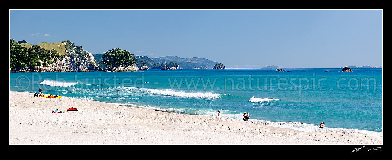 Image of Whiritoa Beach panorama scene with people enjoying swimming, surfing, walking, sunbathing and kayaking in summer warmth. Coromandel Peninsula, Whiritoa, Hauraki District, Waikato Region, New Zealand (NZ) stock photo image