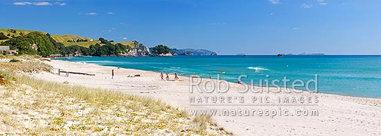 Whiritoa Beach panorama scene with people enjoying swimming, surfing, walking, sunbathing and kayaking in summer warmth. Coromandel Peninsula, Whiritoa, Hauraki District, Waikato Region, New Zealand (NZ) stock photo.