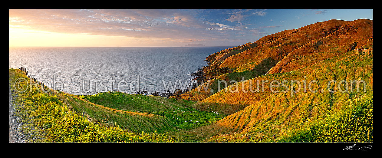 Image of Coromandel panorama looking north from near Cape Colville to Little Barrier Island (Hauturu) on beaut summer evening sunset. Farmland and dirt road, Cape Colville, Thames-Coromandel District, Waikato Region, New Zealand (NZ) stock photo image