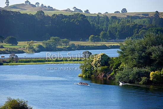 Lake Karapiro with rowing team of rowers training on lake with support boats and coaches. Rowing eight 8, Lake Karapiro, Cambridge, Waipa District, New Zealand (NZ) stock photo.