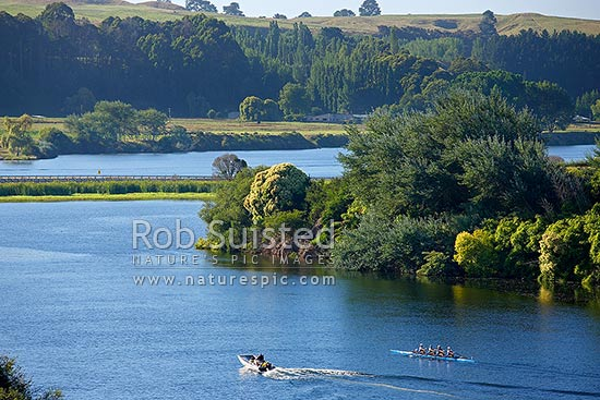 Lake Karapiro with rowing team of rowers training on lake with support boats and coaches. Coxed four 4, Lake Karapiro, Cambridge, Waipa District, Waikato Region, New Zealand (NZ) stock photo.