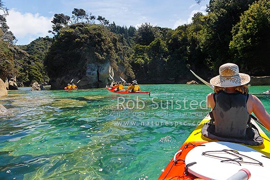Abel Tasman sea kayaking in Shag Harbour. Double sea kayakers and paddlers amongst rocky inlet and native forest on beautiful summer day, Abel Tasman National Park, Tasman District, Tasman Region, New Zealand (NZ) stock photo.