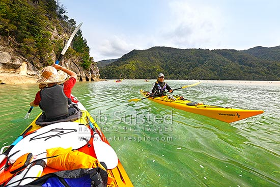 Abel Tasman sea kayaking into Torrent Bay inlet or harbour. Woman paddler passing double kayaks in guided party, Abel Tasman National Park, Tasman District, Tasman Region, New Zealand (NZ) stock photo.