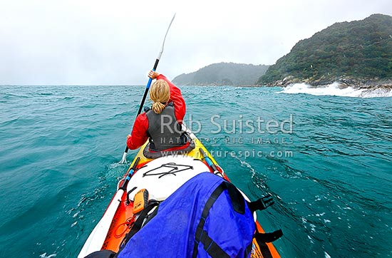 Abel Tasman sea kayaking during rough weather on the 'mad mile' near Anchour Bay. Woman paddling strongly in big swell, Abel Tasman National Park, Tasman District, Tasman Region, New Zealand (NZ) stock photo.