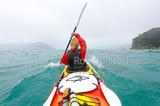 Abel Tasman sea kayaking during rough weather on the 'mad mile' near Hapuku Reef. Woman paddling strongly in big swell, Abel Tasman National Park, Tasman District, Tasman Region, New Zealand (NZ) stock photo.