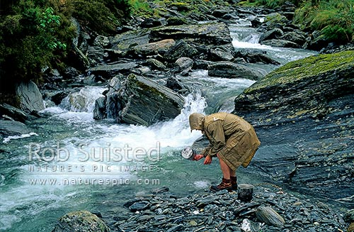 Washing the billies at camp in the rain, Mahitahi River, Westland, Westland District, West Coast Region, New Zealand (NZ) stock photo.
