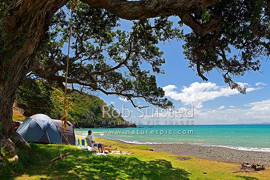 Beach Campsite Family Group Enjoying Summertime Holiday