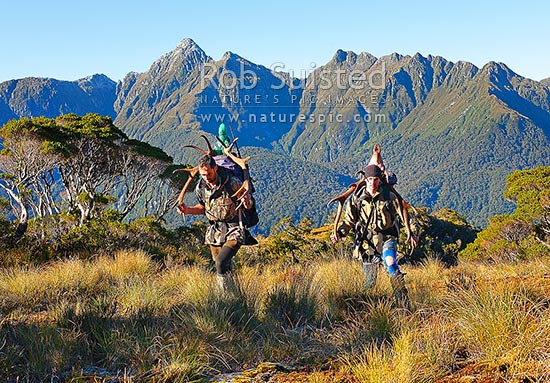Wapiti deer hunters carrying trophies of large antlers on backs, Edith River, Glaisnock Wilderness Area. Rob Suisted left, Evan Mardell right, Fiordland National Park, Southland District, Southland Region, New Zealand (NZ) stock photo.