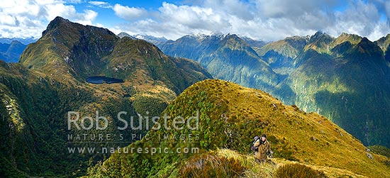 Tramper hunter on the Edith River tussock tops. Edith River right. Glaisnock Wilderness Area. George Sound, Fiordland National Park, Southland District, Southland Region, New Zealand (NZ) stock photo.