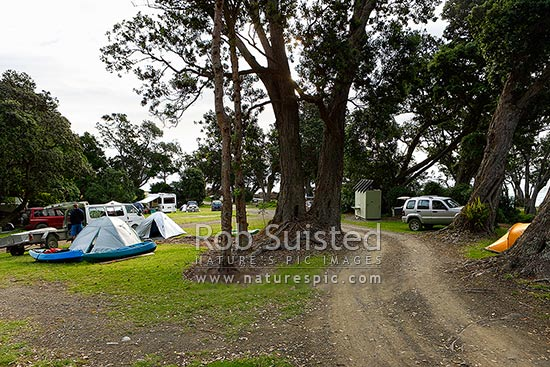 Fantail Bay campsite, Department of Conservation camping ground near Cape Colville with tents, boats, campervans and vehicles amongst nice forest gully, Cape Colville, Thames-Coromandel District, Waikato Region, New Zealand (NZ) stock photo.