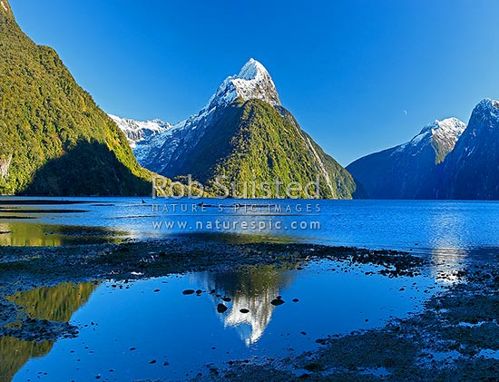 Mitre Peak reflecting in Milford Sound. Mitre Peak left (1683m), Stirling Falls left, Milford Sound, Fiordland National Park, Southland District, Southland Region, New Zealand (NZ) stock photo.
