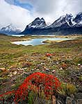 Rugged terrain of the Chilean Fiords