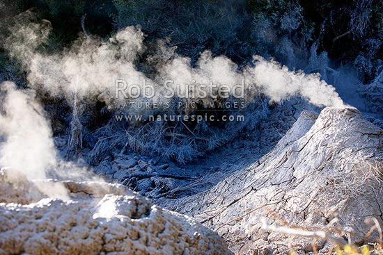 Geothermal mudpools. Steaming cone of boiling mudpools, Waiotapu, Rotorua District, Bay of Plenty Region, New Zealand (NZ) stock photo.