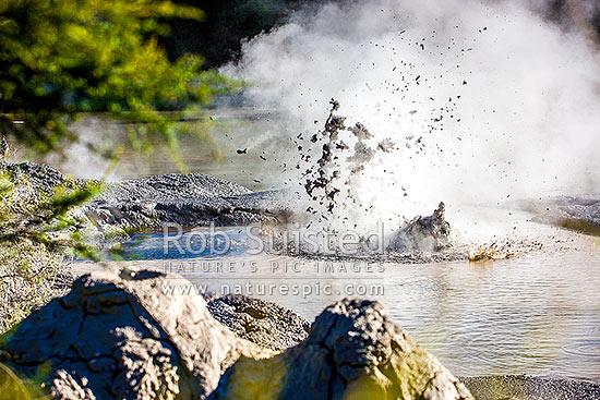 Geothermal mudpools  Boiling mud violently erupting steam