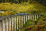 Train crossing viaduct, Ohakune
