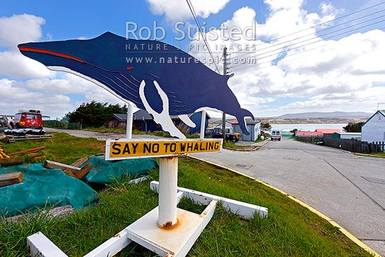 Say no to Whaling sign and statue declaring house, Port Stanley, Falkland Islands stock photo.