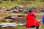 Tourist photographing penguins