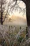 Early morning hoar-frost