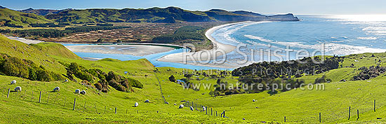 Looking across farmland to Okia Flat, Victory Beach and Wickliffe Bay to Te Whakarekaiwi Point. Papanui Inlet centre left. Panorama, Otago Peninsula, Dunedin City District, Otago Region, New Zealand (NZ) stock photo.