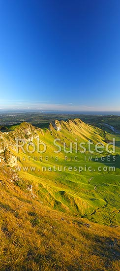 Sunrise on Te Mata Peak (399m). Overlooking Hawke Bay and the Tukituki River with Napier far left. Vertical panorama, Hawke's Bay, Hastings District, Hawke's Bay Region, New Zealand (NZ) stock photo.