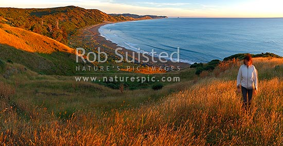 Port Awanui and Te Wharau Beach sunrise. East Cape and East Island (Whangaokeno) visible in distance. Panorama, Port Awanui, East Coast, Gisborne District, Gisborne Region, New Zealand (NZ) stock photo.