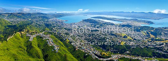 Wellington City aerial view panorama. Karori Sanctuary Zealandia left, City and Harbour centre, Airport right. Wind turbine centre below. Earthquake faultline visible along left of harbour, Wellington City, Wellington City District, Wellington Region, New Zealand (NZ) stock photo.