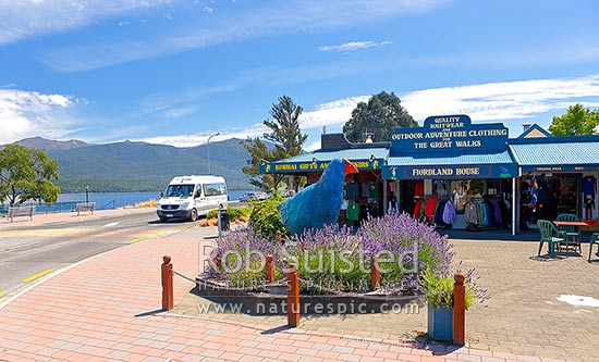 Te Anau township; souvenir shops and giant Takahe sculpture recognising the birds' nearby rediscovery, Te Anau, Southland District, Southland Region, New Zealand (NZ) stock photo.