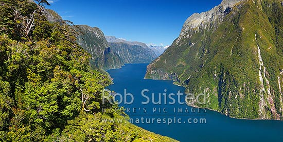 Looking up Milford Sound / Piopiotahi from near entrance. The Lion (1302m) left, Mitre Peak right, Darran Mountains in distance. Aerial panorama, Milford Sound, Fiordland National Park, Southland District, Southland Region, New Zealand (NZ) stock photo.