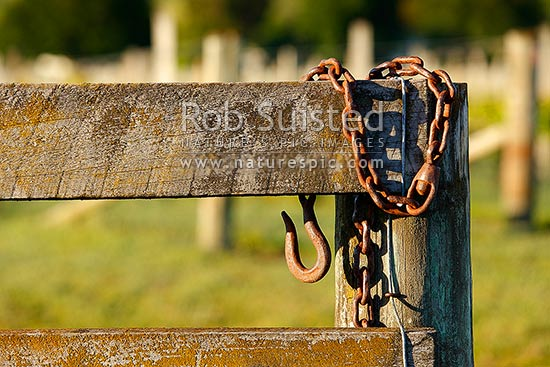 Farm Gate Posts And Old Rusty Steel Closure Hook Hanging