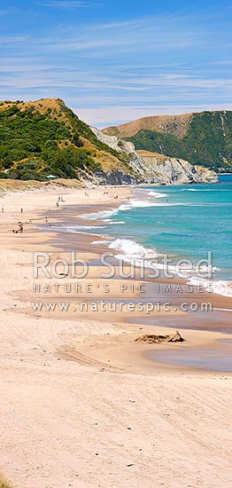 Wainui Beach summer vertical panorama. Makarori Point beyond, Wainui Beach, Gisborne District, Gisborne Region, New Zealand (NZ) stock photo.