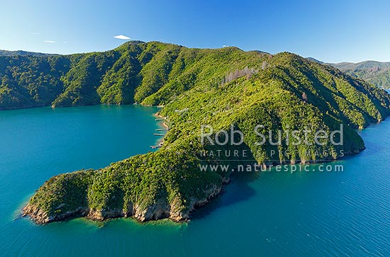 Kaipapa Bay with houses and baches. Queen Charlotte Sound, with Golden Point in foreground, Marlborough Sounds, Marlborough District, Marlborough Region, New Zealand (NZ) stock photo.