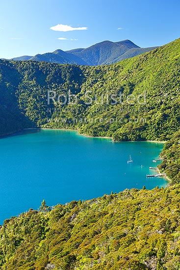 Queen Charlotte Sound. Quiet secluded bay with baches, jetties and yachts and bush clad hills, Marlborough Sounds, Marlborough District, Marlborough Region, New Zealand (NZ) stock photo.