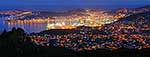Wellington city night time panorama