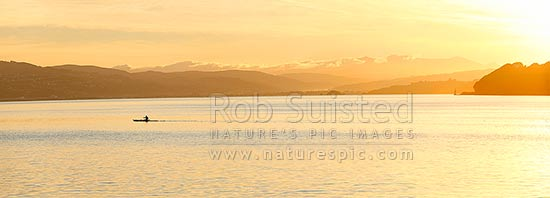 Wellington Harbour with waka ama (outrigger canoe) paddler in front of the Hutt Valley and Tararua Ranges (distant) at dawn. Point Halswell right. Panorama, Wellington, Wellington City District, Wellington Region, New Zealand (NZ) stock photo.