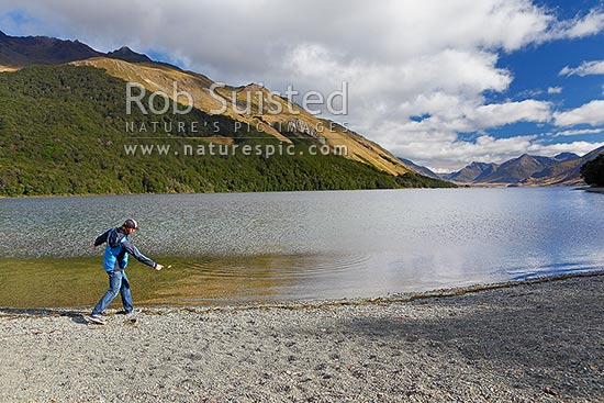 Visitor skimming or throwing stones into North Mavora Lake nestled between the Livingstone and Thomson Mountains ranges. Snowdon Forest Conservation Area & Mararoa River Valley, Te Anau, Southland District, Southland Region, New Zealand (NZ) stock photo.